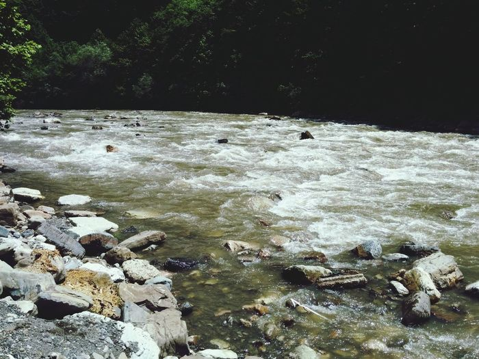 Picnic River Joyful