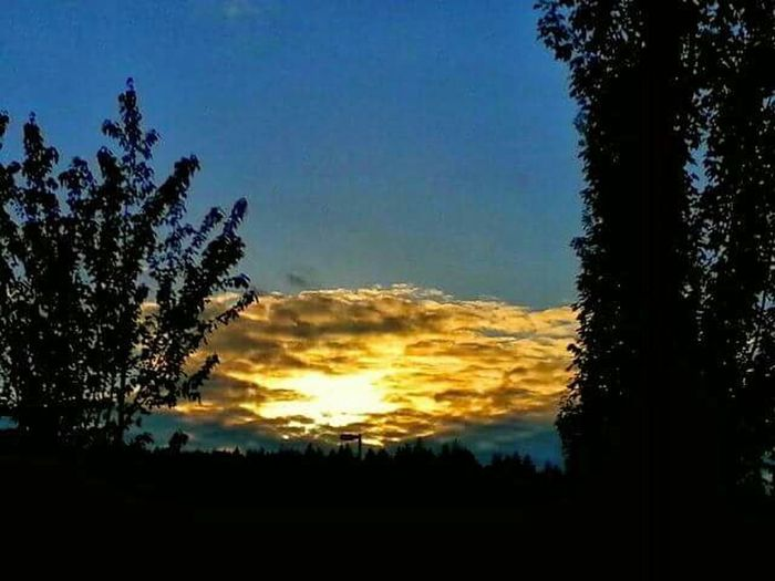 Epic Shot Photography Sunsets Northwestsunsets Sunset_collection Sky And Trees Sun_collection, Sky_collection, Cloudporn, Skyporn