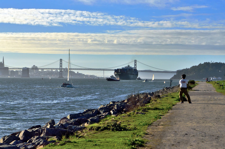 Freighter Arrives At Middle Harbor 1 Port Of Oakland, Ca. San Francisco Bay Bay Bridge San Francisco Skyline Coit Tower Golden Gate Bridge Yerba Buena Island Transamerica Pyramid Building Sailboats Tugboats Waterfront Shoreline Depth Marker Nautical Vessels Commerce On The Move Import /export Port Containers Shipping  Clounds And Sky Bridge Span Bridge Towers Pathway Benches Man Watching