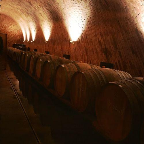 Wine Winemaking Casks Winery Visiting Winery