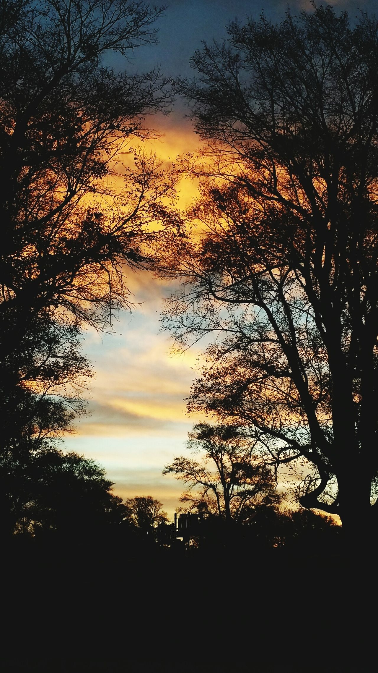 Beautiful November Sunrise - Dawn In Kansas City, Missouri USA Mmmmm.....Sweet!!!!!!