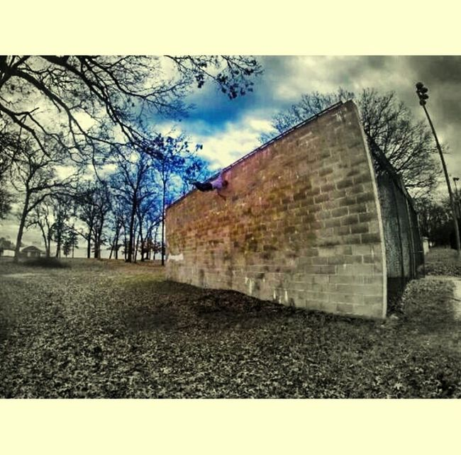Depth Of Field done with gopro Gopro