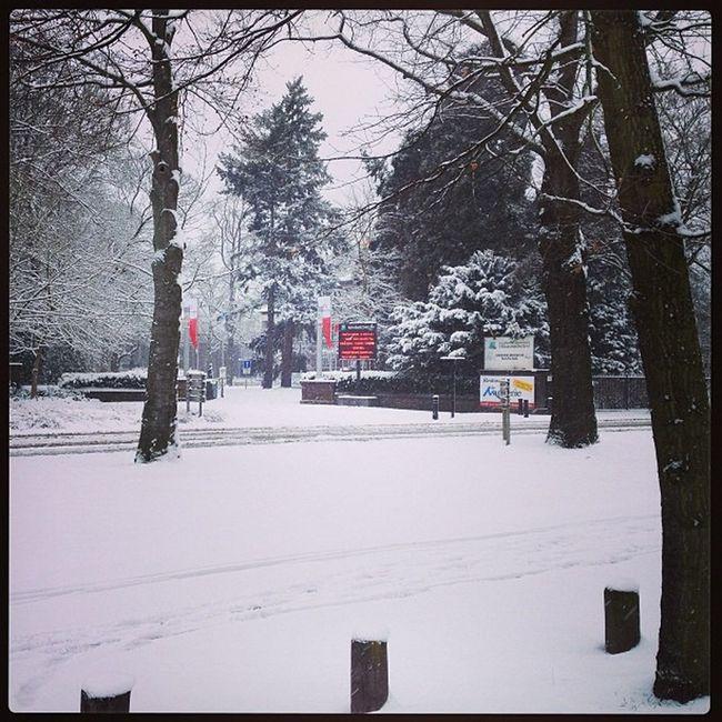 Winter and Snow in Eisden Eisdentuinwijk Maasmechelen