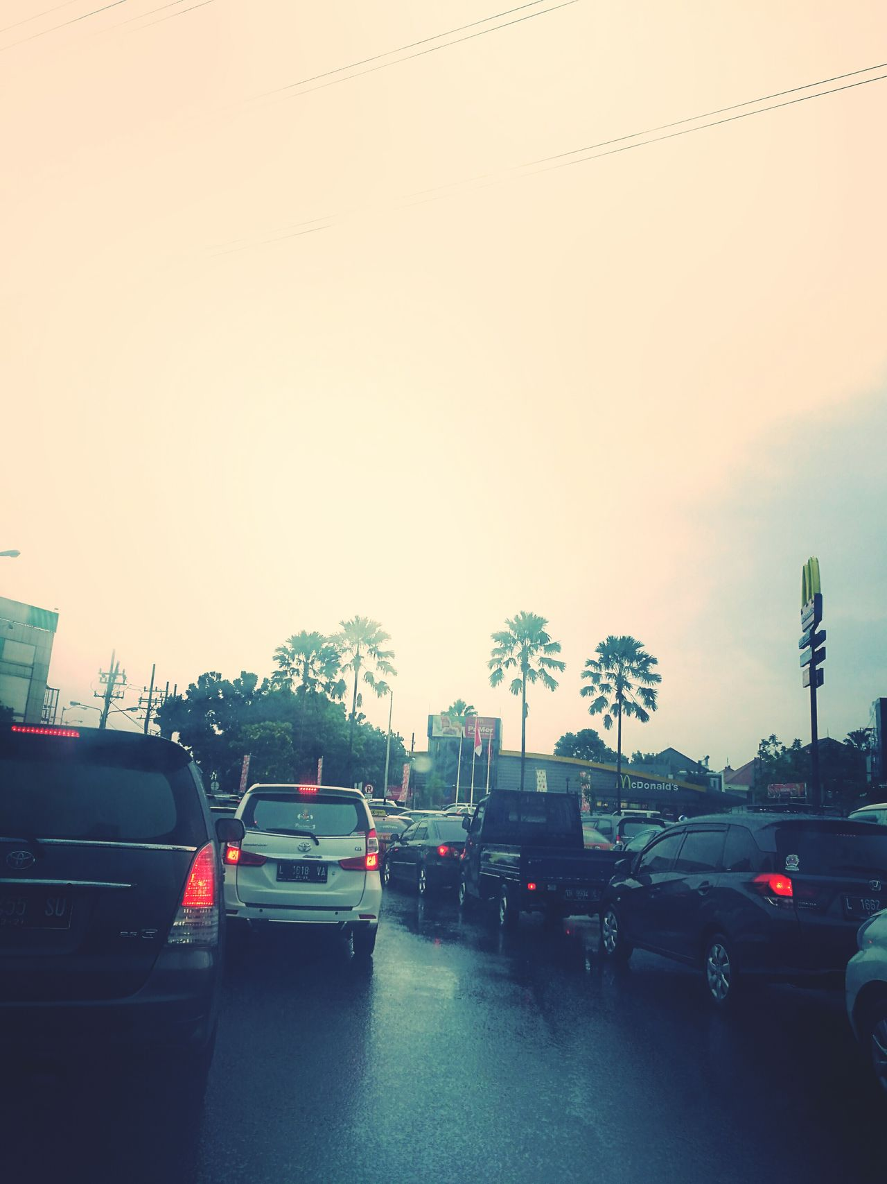 Palm Tree Rainy Days Traffic Jam Cloud - Sky Outdoors