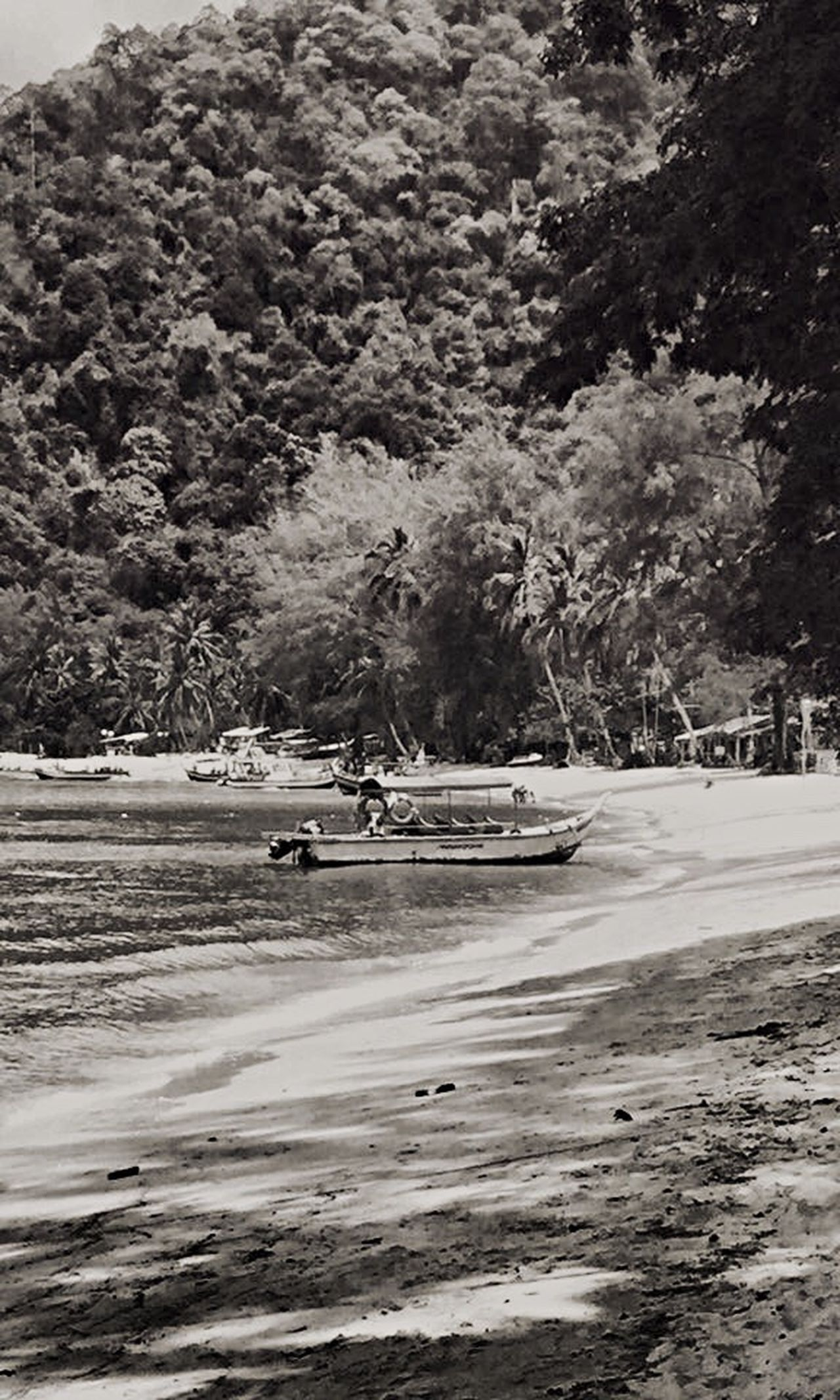 Monkey Beach Beach Blackandwhite Malaysia My Unique Style Penang Islandlife Boat Jungle Beach