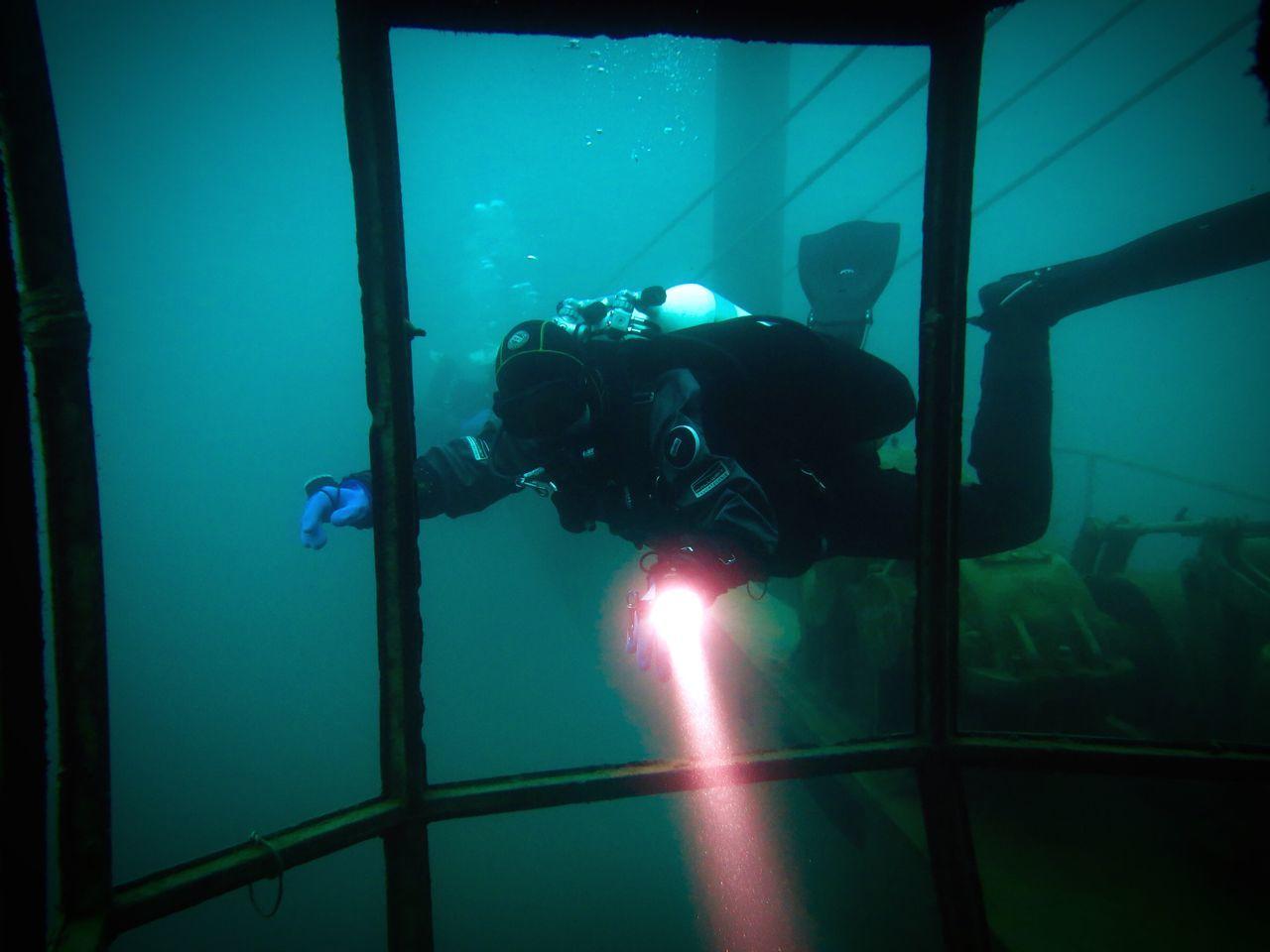 Person Scuba Diving In Aquarium