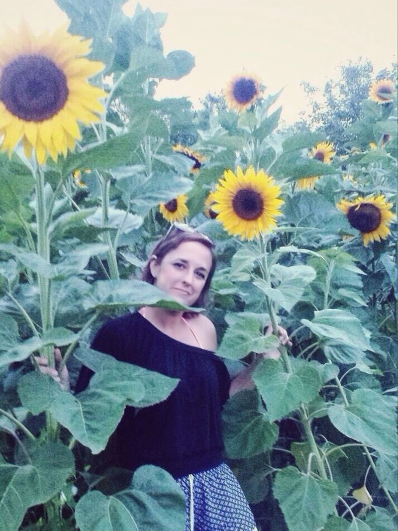Freshness Flower Petal Plant Flower Head Stem Growth Beauty In Nature Leaf Sunflower 🌻💚 Girl Thats Me  ThatsMe That's Me! In Flower On The Road 🚗 Fieldscape Sunflowers🌻 Sunflower