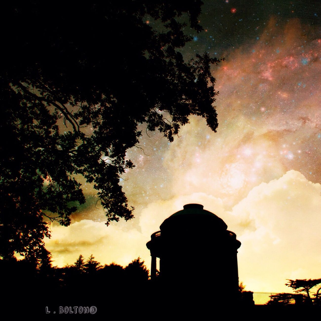 Silhouette Tree Sky Nature Outdoors Beauty In Nature No People Day Galaxy Stars Mausoleum History Architecture EyeEm Best Shots Majestic Canonphotography Exploring Sky_collection