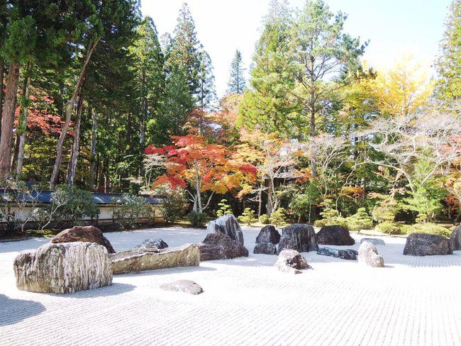 Zen garden in Wakayama Moment Of Silence Silence Of Moment Zen Garden Peaceful Wakayama Zen