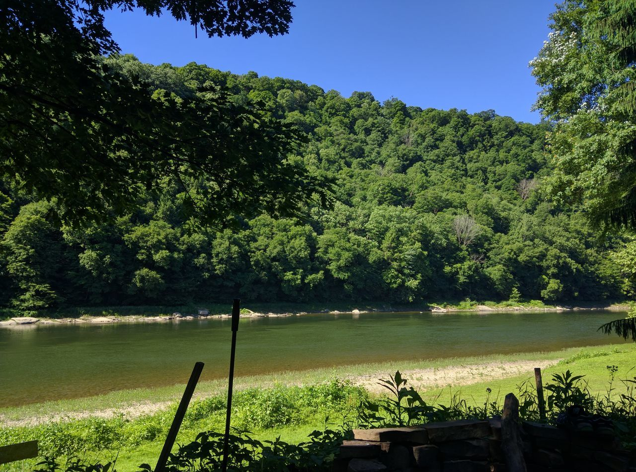 Camping Allegheny River River Summer Western Pennsylvania River Bank