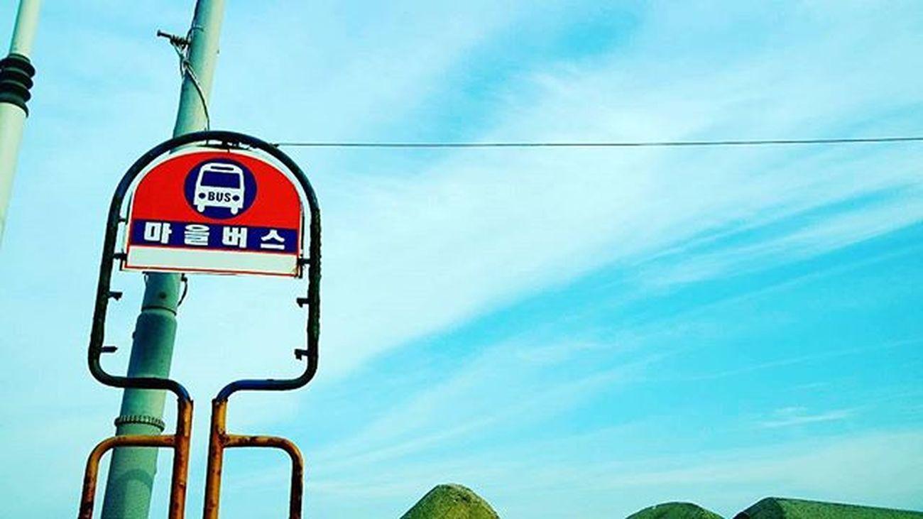 Photography Photographer 부산 Busan Sky 일상 데일리 감성 감성사진 사진 여행 일상공유 Sotong 미러리스카메라 Follow Followme Photo Travel Daily Southkorea