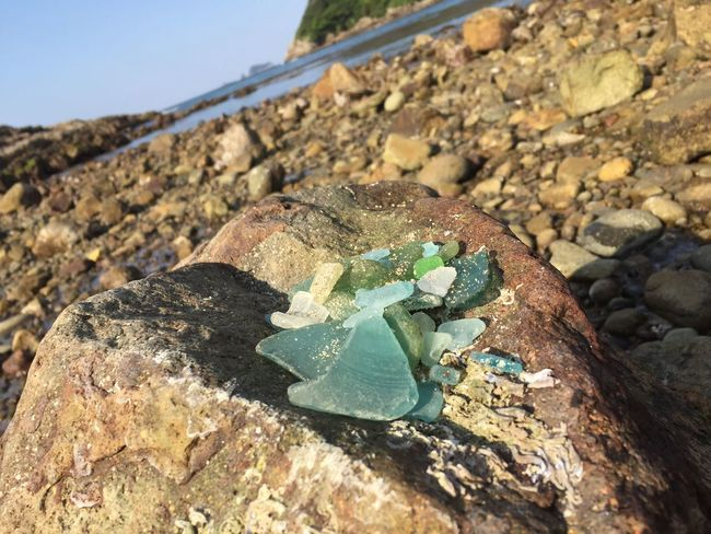 Sea glass Collected Today Sea Holiday