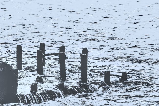 Wooden Post Tranquility Nature Tranquil Scene Water Scenics Waterfront Beauty In Nature Day Outdoors Wave Pattern Majestic Non-urban Scene Water Surface Flying Seascape Seaside_collection Abondened Places