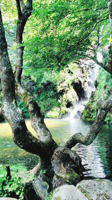 Pozo da Ferida, Viveiro, Galicia. Pozo Da Ferida Viveiro Galicia Waterfall Nature Trees Water Lake SPAIN Lovely Place Rocks