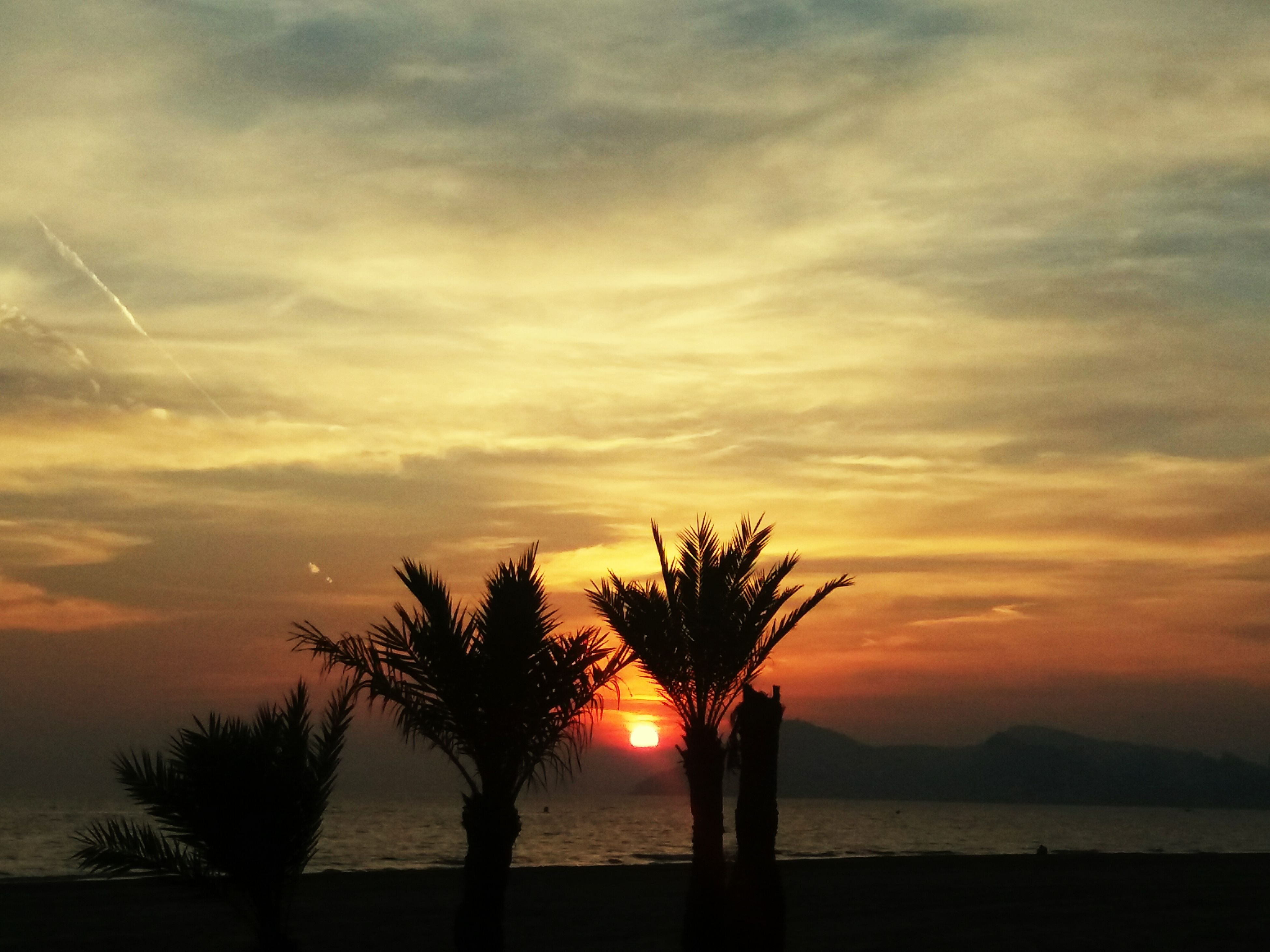 sunset, silhouette, scenics, tranquil scene, tranquility, sky, beauty in nature, water, sea, sun, orange color, idyllic, nature, horizon over water, tree, cloud - sky, cloud, dramatic sky, beach, majestic