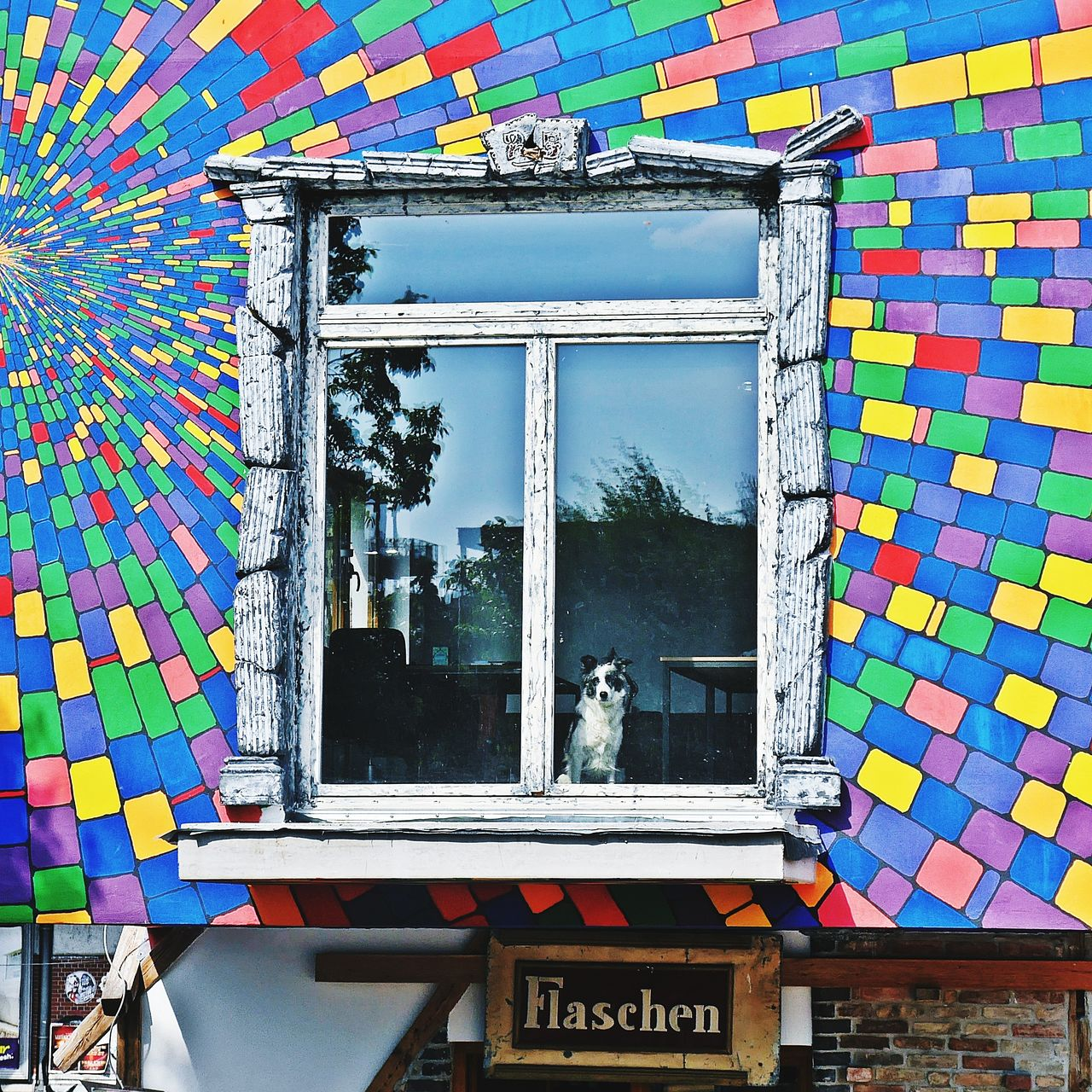 I need a room with a view 🎈Multi Colored Window Architecture EyeEmNewHere Inspirations Everywhere. Creativity Art Is Everywhere EyeEm Gallery Architecture_collection Inspirations Sidewalk Discoveries Streetphotography Cityscape Urban Lifestyle Berliner Ansichten Berlinlove Berlin Sidewalk Photograhy Views From The Sidewalk Kreuzberg Facadelovers Window Box View From Below Windows_aroundtheworld Look Through The Window