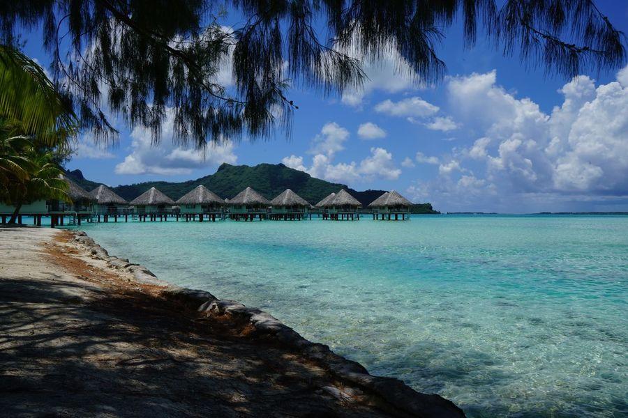 Sea Water Sky Beach Scenics Blue Horizon Over Water Beauty In Nature