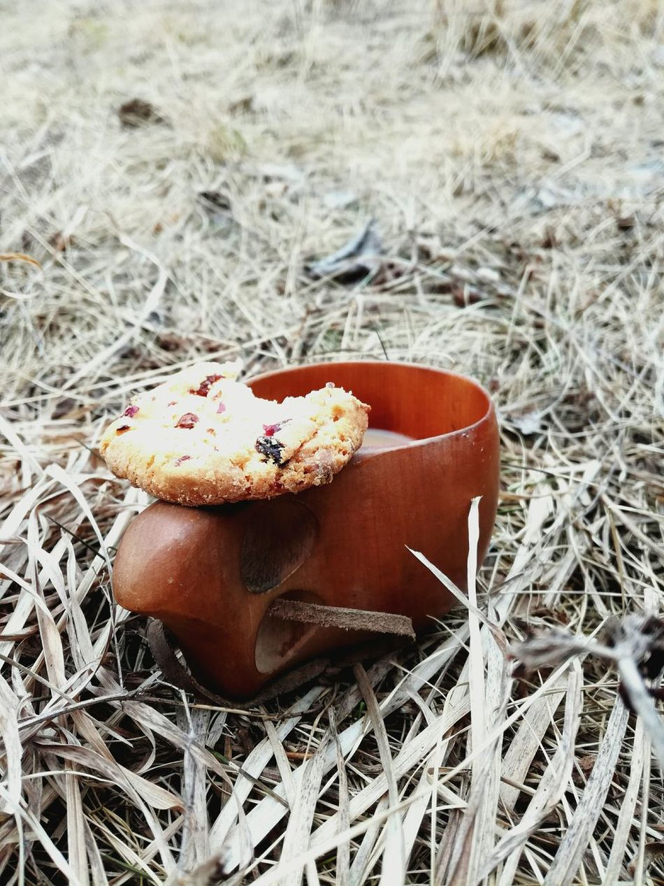 Close-up No People Outdoors Day Nature Grass Kuksa Kuksacup Biscuit Picnic Hay Springtime Cold Weather Finnish