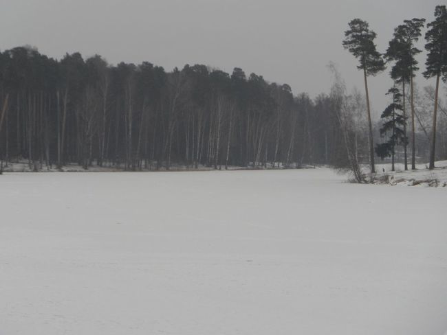 Hello World Walking Around Picnic Winter