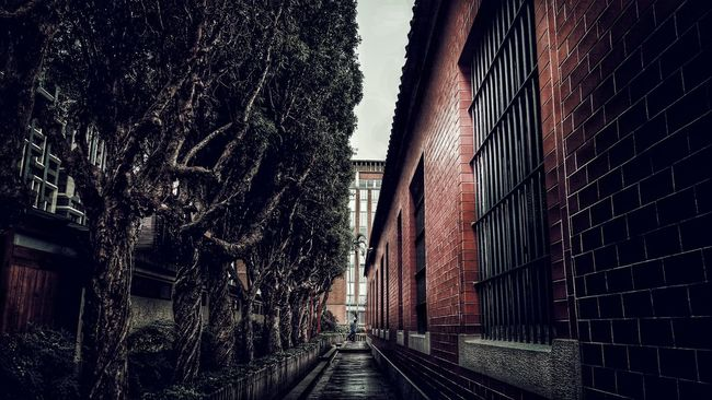 People Photography Old Buildings Temple - Building Hugging Trees Temple Taking Photos Light And Shadow Monochrome Hugging Tree TreeTree Streetphotography Old Building  Red Wall來求籤...🙏🙏🙏