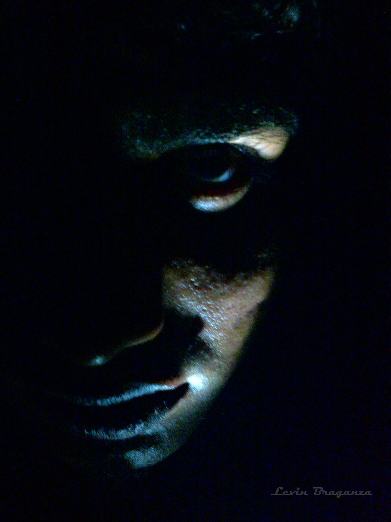 This is a shot wherein I tried to portray the negativity in me via the self portrait and different lighting approach