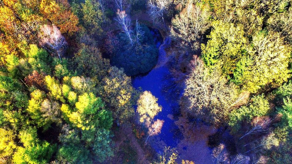 Perspectives On Nature Dji Skypixel