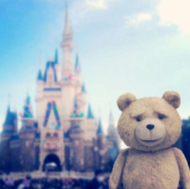 ピントあっちゃった(・ω・) Ted in Cinderella Castle Tokyo Disney Land 東京ディズニーランド