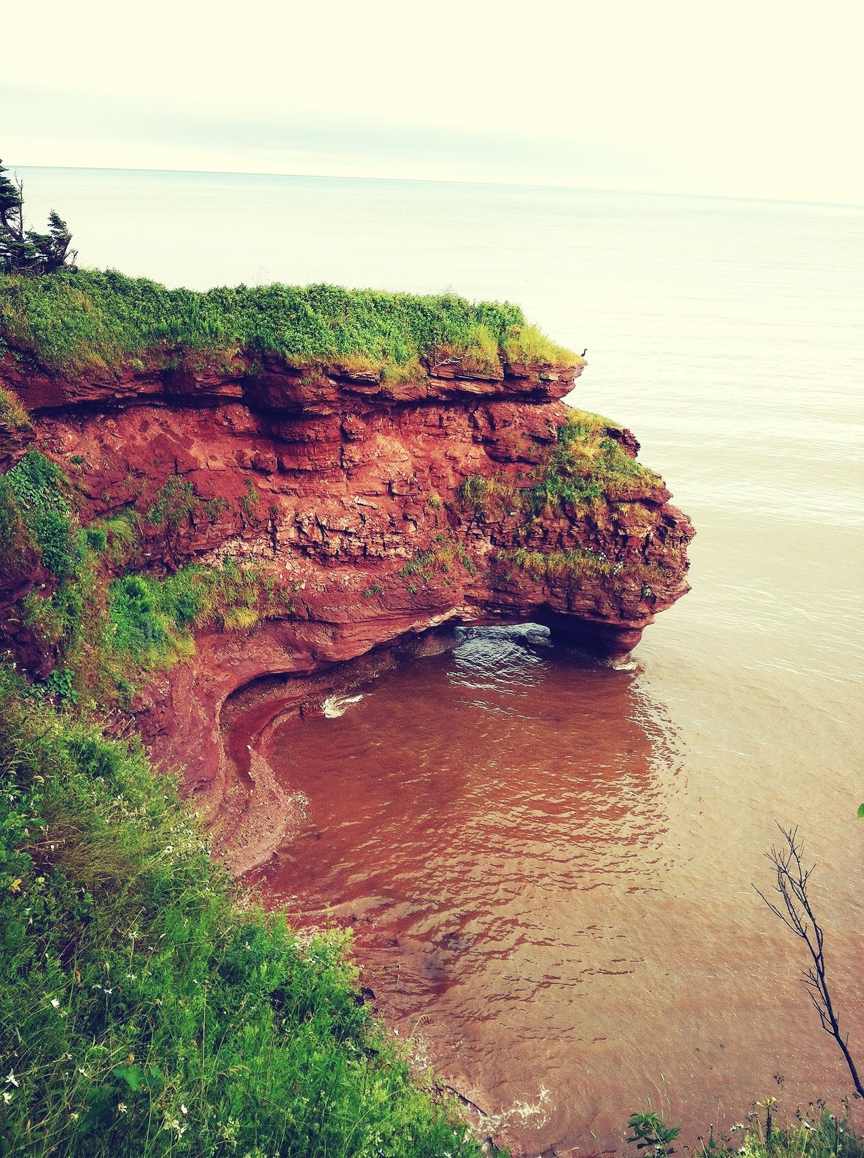 water, sea, beach, horizon over water, tranquility, tranquil scene, scenics, shore, beauty in nature, nature, rock - object, coastline, sky, idyllic, rock formation, rock, sand, grass, plant, cliff