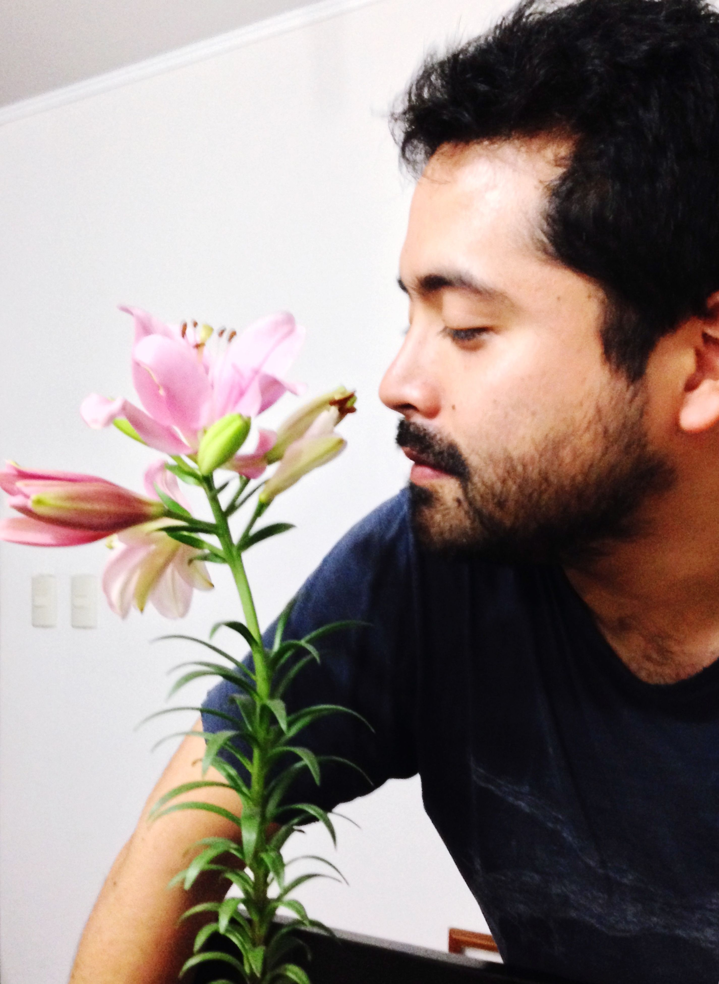 flower, plant, contemplation, lifestyles, one person, young adult, beard, indoors, nature, close-up, real people, men, day, fragility, freshness, adults only, adult, people
