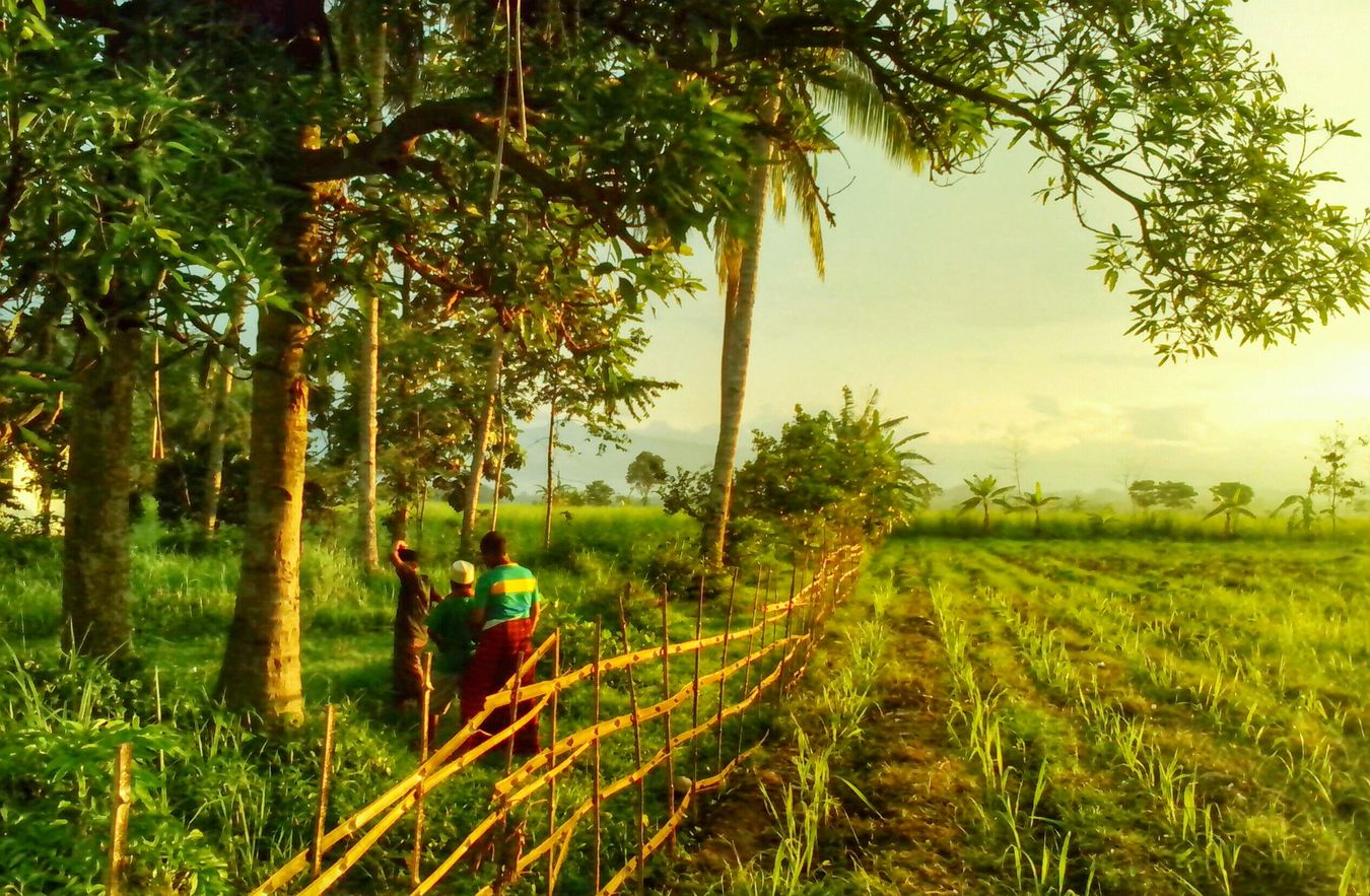 Surobayan Landscape_Collection Pekalongan City BeautyfullIndonesia Amazing View Thaking Photos Hdr_Collection
