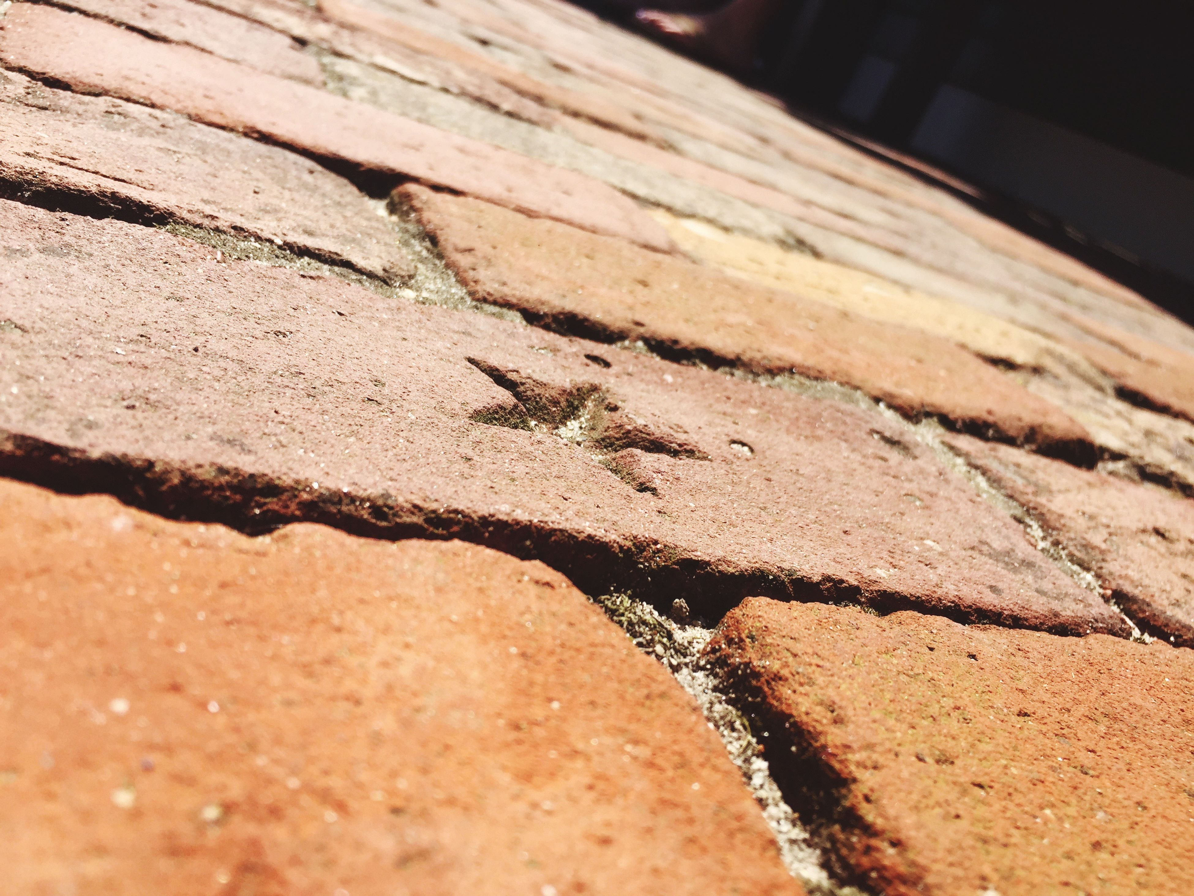 textured, close-up, rough, backgrounds, full frame, selective focus, cracked, detail, no people, brown, day, outdoors, natural pattern, focus on foreground, nature, surface level, abstract