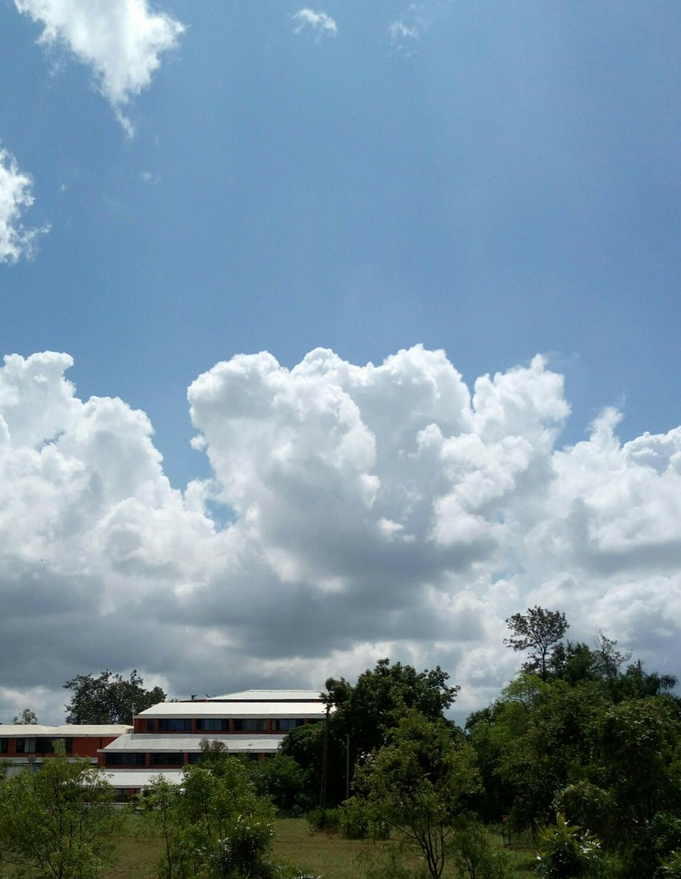 cloud - sky, tree, sky, day, no people, architecture, outdoors, built structure, nature, building exterior, beauty in nature