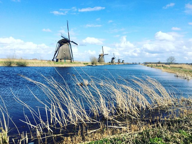 Windmill Holland Hello World Blue Landscape