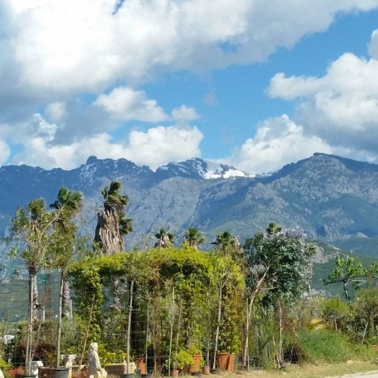 La Corse et ses contrastes!!! Neige Corsica 2B Tristesse comeback