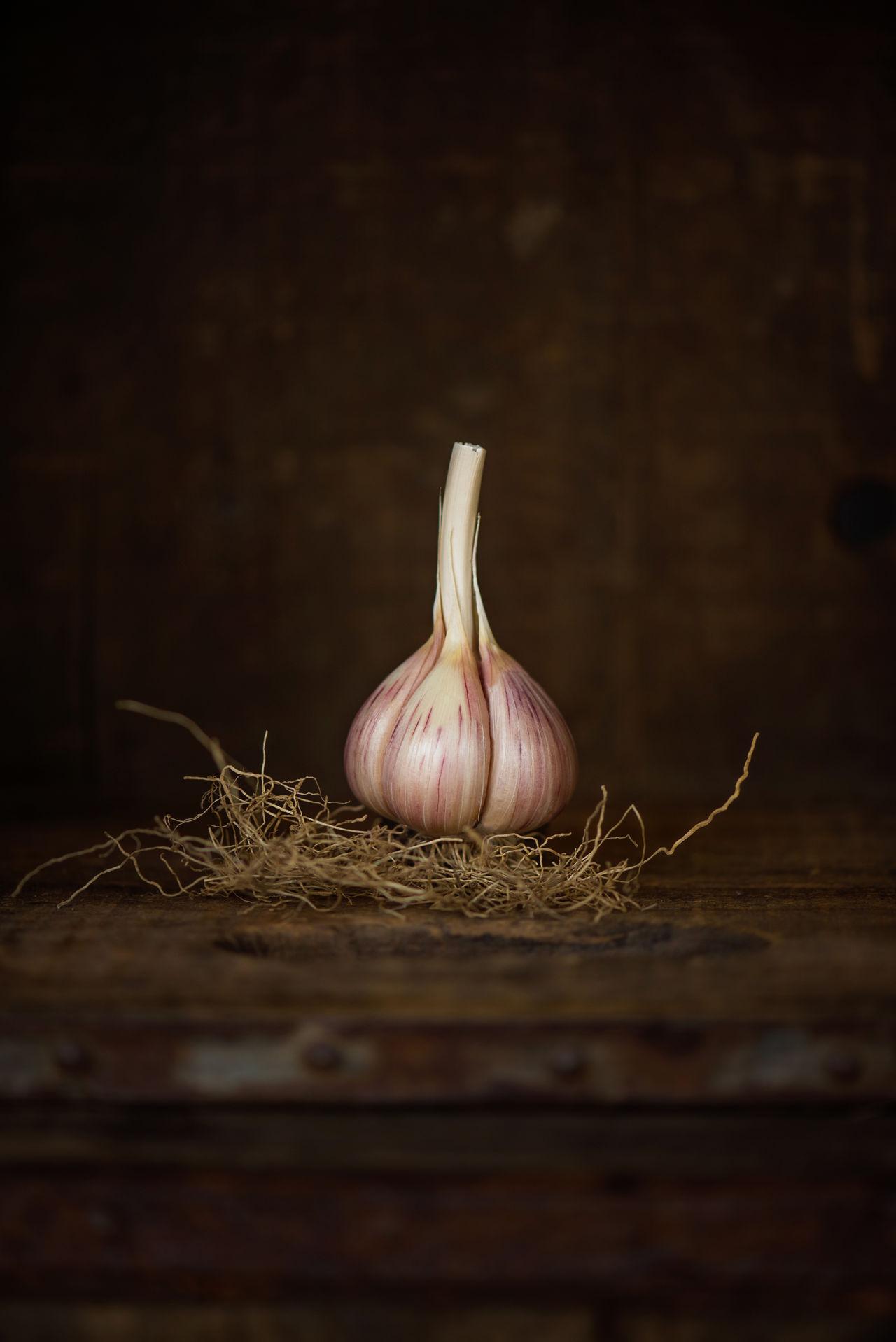 Beautiful portrait of garlic with a dark wood background Cooking EyeEm Best Shots Food Foodie Culture Garlic Garlic Bulb Garlic Bulbs Garlic Clove Healthy Eating Portrait Of Garlic Spice Still Life Studio Shot Wood - Material
