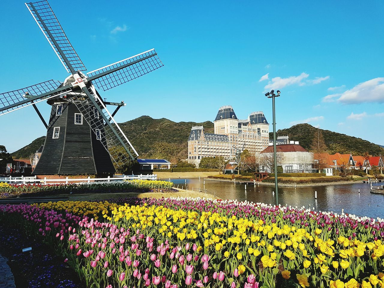 Beauty In Nature Outdoors Sky Windmill Flower Travel Nature Cloud - Sky Reflection Tree Nature Lake Leaf Water No People Day Growth Huis Ten Bosch ArchitectureBeauty In Nature Nagasaki Japan Fukuoka,Japan Dutch Landscape Amsterdam