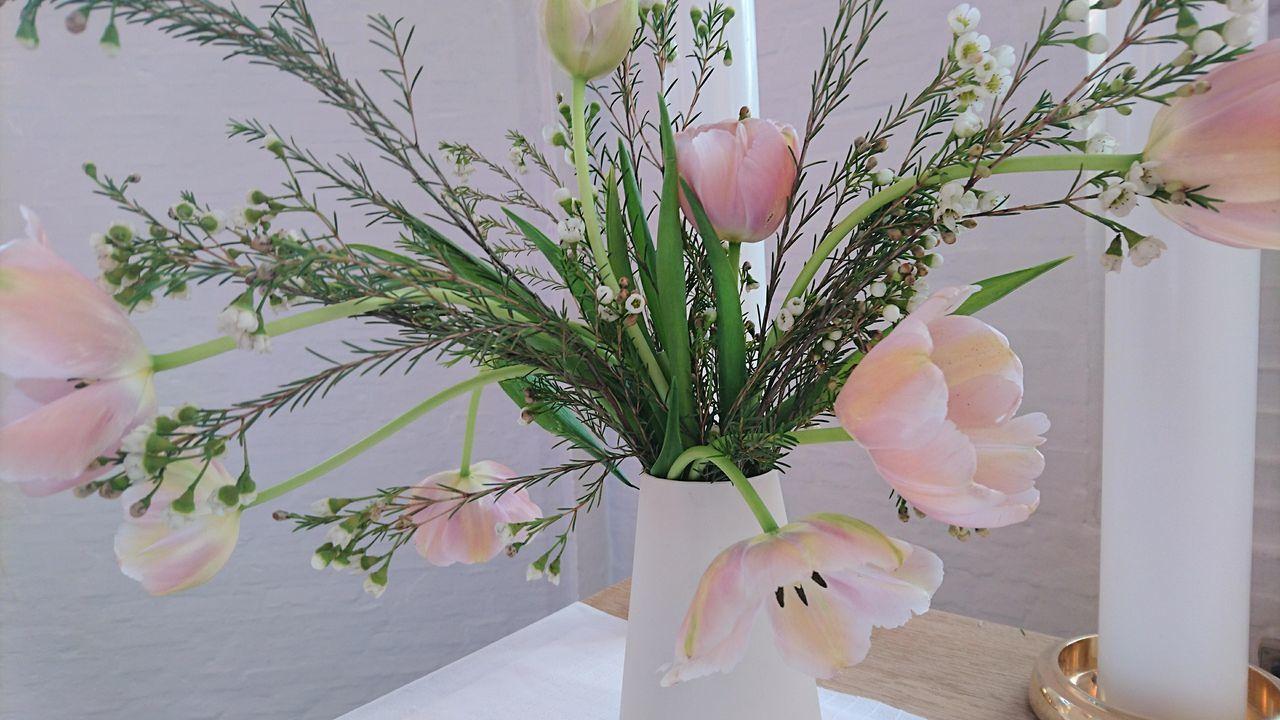 Millennial Pink Flowers At The Alther Church Interior Gods House Pink Femininity Messiaskirken Flower Flower Arrangement Flower Head Freshness Tulips🌷 Indoors