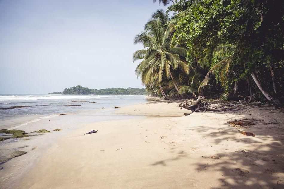 Beautiful stock photos of jamaica, Beach, Beauty In Nature, Coastline, Day