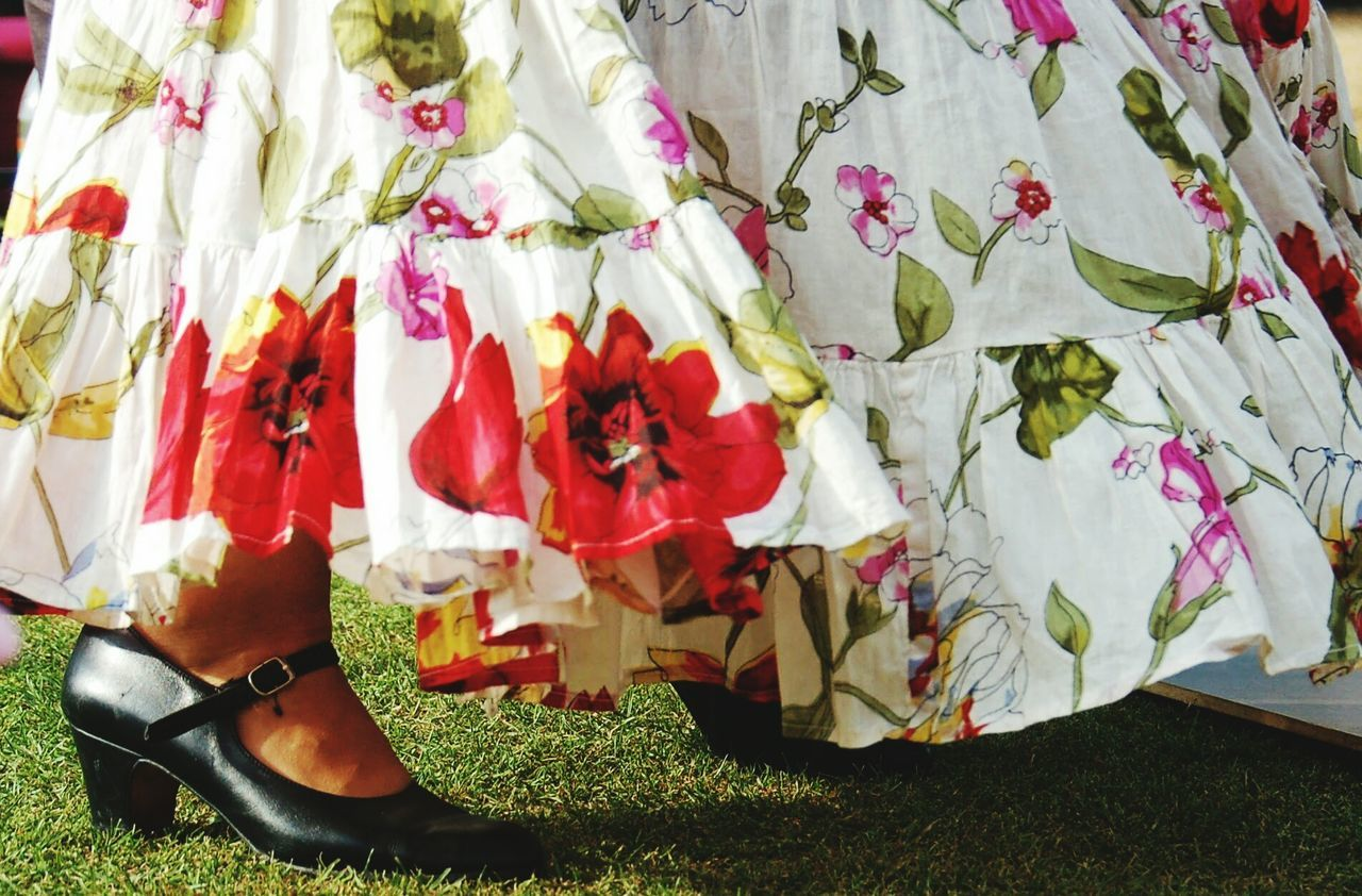 Cambridge, United Kingdom Botanic Gardens Cambridge Flamenco Dress Poppies  Shoe Dance Close-up Real People Outdoor Concert