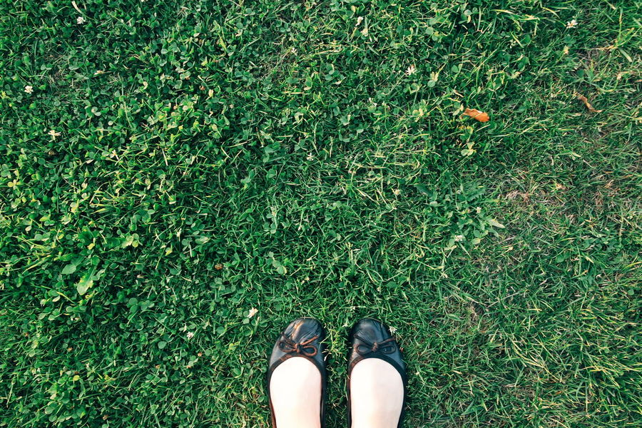 Feet On The Ground Feet On The Grass Grass