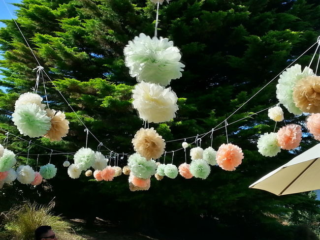 Flowers of love. Wedding Flowers Autumn New Zealand Scenery