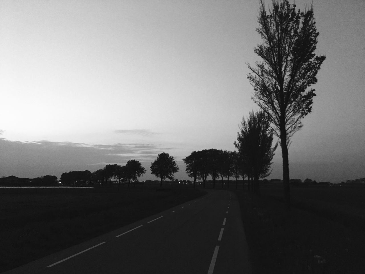 road, tree, the way forward, landscape, transportation, nature, no people, tranquil scene, tranquility, scenics, silhouette, clear sky, outdoors, sky, day, beauty in nature