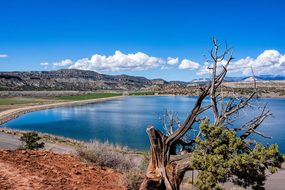 Beauty In Nature Blue Day Lake Landscape Love No People Outdoors Sagebrush Sky Summer Tourism Travel Tree Utah County Water