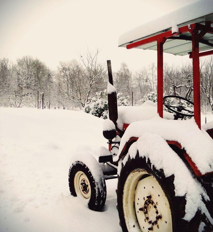 It's Cold Outside Winter Wintertime Winterscapes Hungary Hungarian Magyar Magyarország Magyarig Magyarinsta Nagykanizsa Hideg Frozen Frosty Mornings Frosty