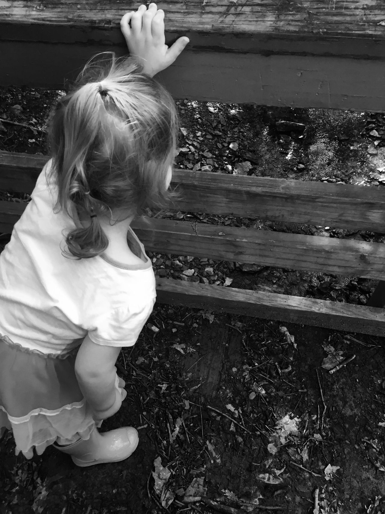 Blackandwhite Water Outside Creek MapleWoods Gwennie Goose Gwinning Toddlerlife Bridge Gwenniegoose