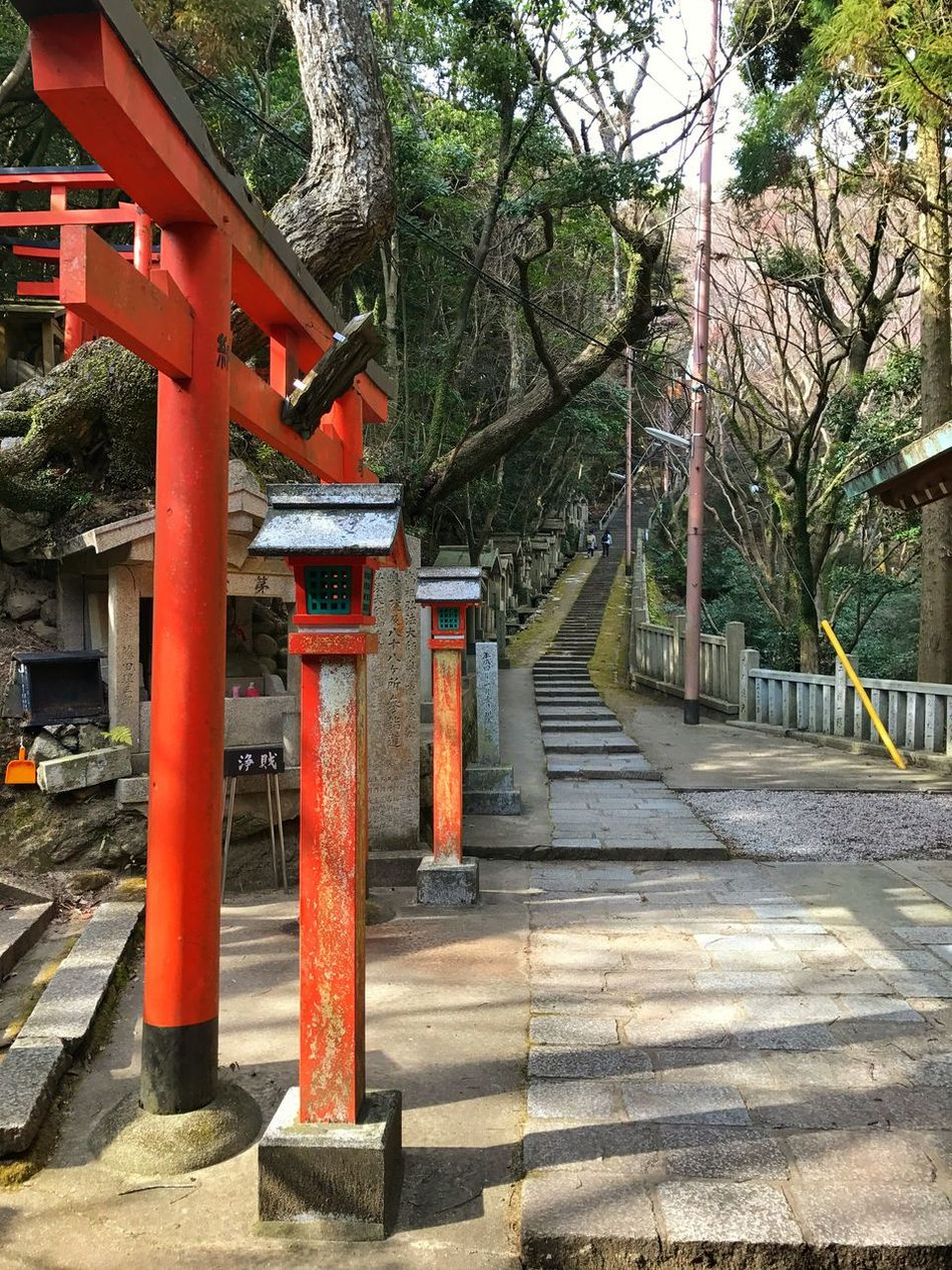 Shrine Red Steps Steps And Staircases
