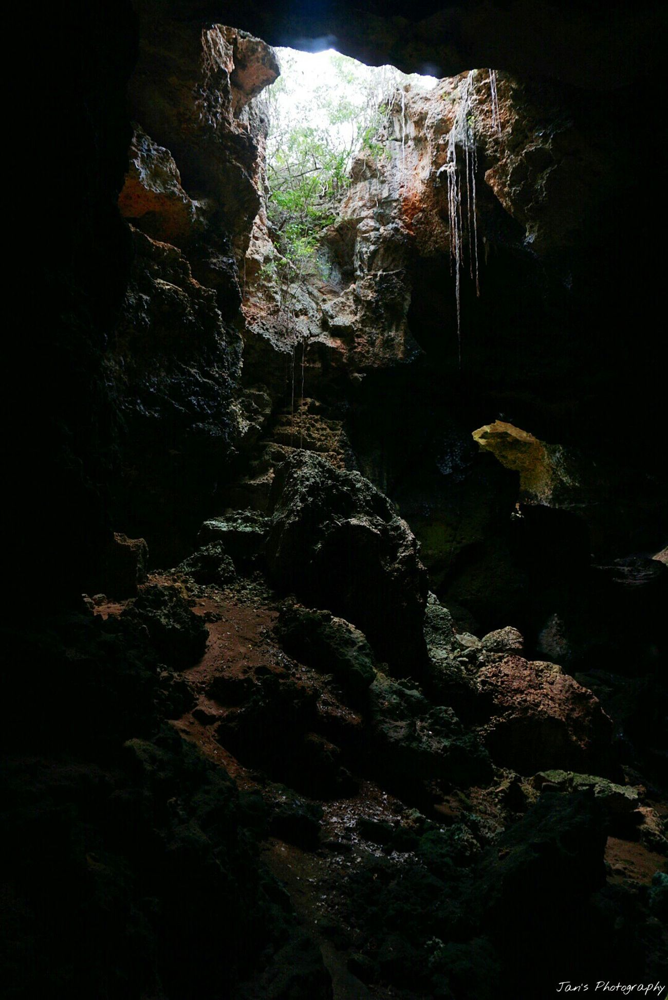 Sony A6000 Sony Hanging Out Check This Out Exceptional Photographs Cave Caves Caves Photography Cave Formations Inside Cave Puerto Rico Guanica, PR Cueva Murciélago Darkness And Light Darkness Dark Cave Adventure Dangerous Places Rare Beauty EyeEm Best Shots EyeEm Nature Lover Nature_collection Nature Textures From My Point Of View Isourhome