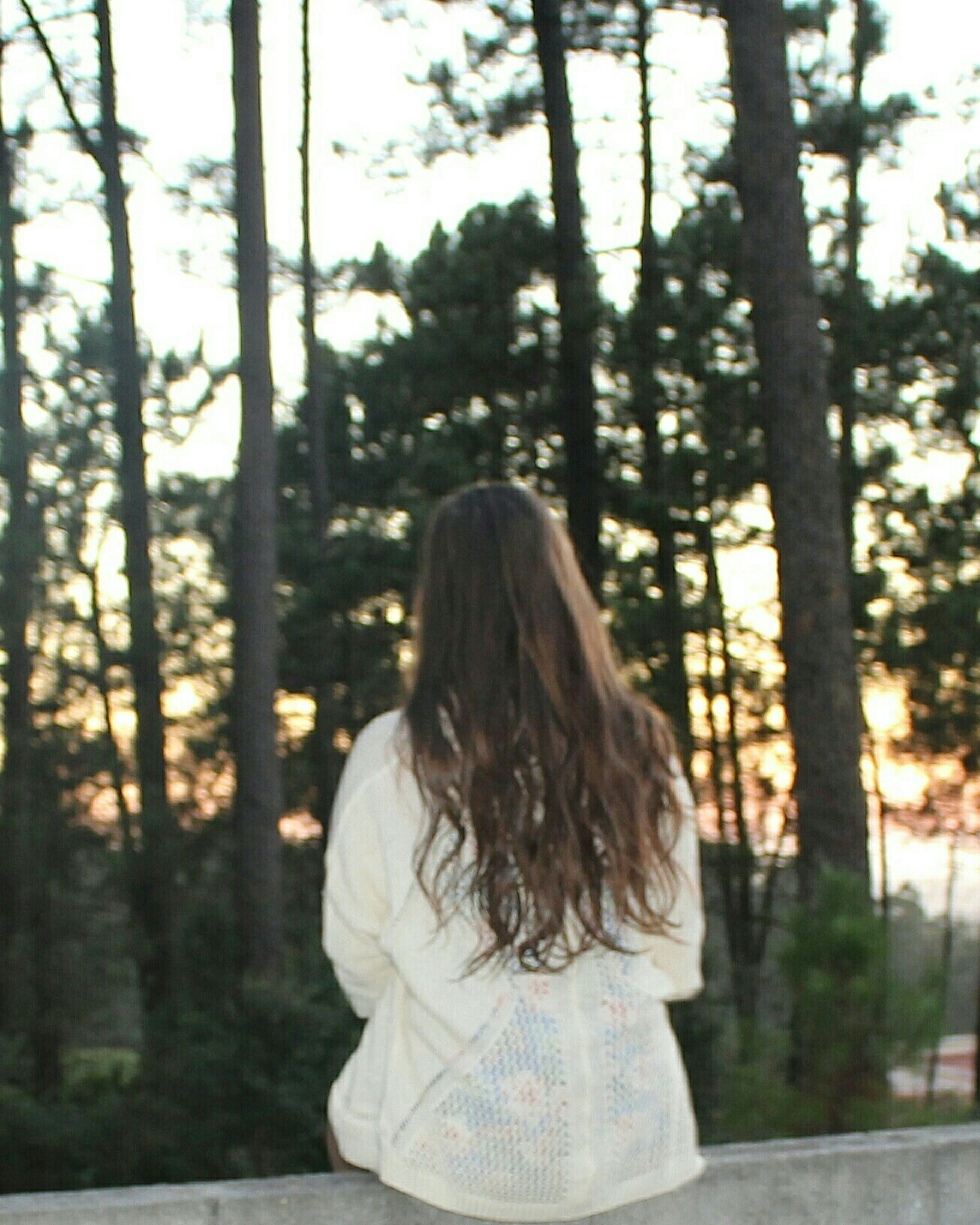 tree, rear view, lifestyles, focus on foreground, long hair, person, leisure activity, casual clothing, park - man made space, standing, young women, waist up, young adult, girls, flower, day, three quarter length, dress