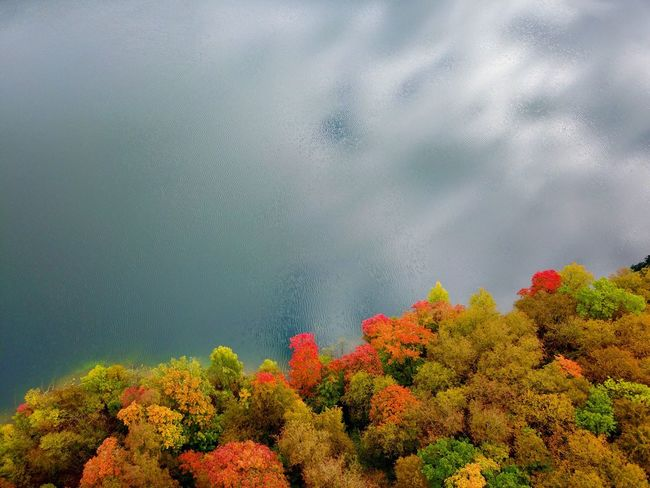 Autumn, sky and lake Nature Beauty In Nature Tree Weather No People Tranquility Day Sky Growth Outdoors Scenics Cloud - Sky Storm Cloud Water