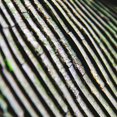 Pivotal Ideas Roof Top Wooden Structure Wood Architectural Detail Architecture Urban Geometry Urban Exploration Urban Nature Seeing The Sights From My Point Of View Bokeh Close Up Shapes And Forms Minimalistic Minimalist Eyeemphoto Color Palette